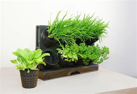 Greenwall Vertical Garden Kit by Greenwall Freestanding Benchtop Vertical Planting Kit