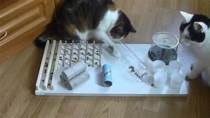 Katzenspielzeug Selber Machen Karton : einzigartiges design interaktives katzenspielzeug box durch smitten kitten 4 individuelle ~ Frokenaadalensverden.com Haus und Dekorationen