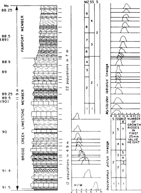 3319243020 stratigraphy a modern synthesis stratigraphy the modern synthesis springerlink