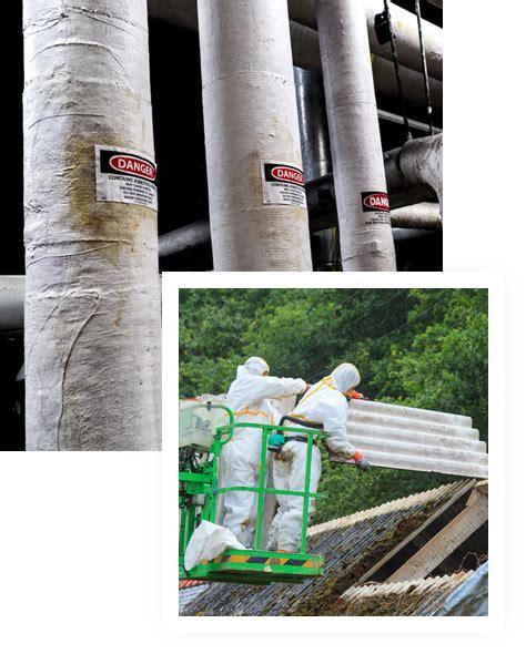 asbestos abatement removal ny nj aaaleadprocom