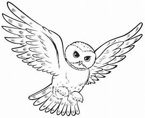 Flying Owl Coloring Pages - Printable Kids Colouring Pages ...