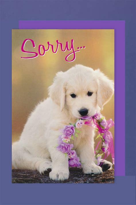 entschuldigung karte grusskarte hund xcm avancarte