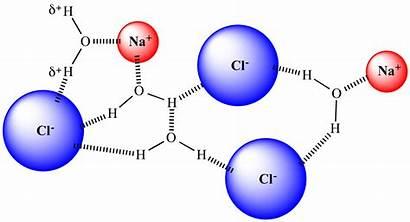 Solvation Nacl Dissolved Chemistry Molecules Shell Chem