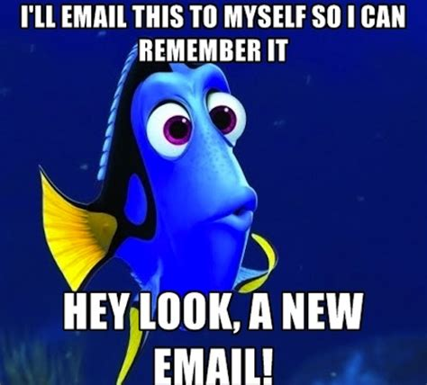 Dory Memes - the forgetful dory meme reminds us how stupid we are sometimes craveonline