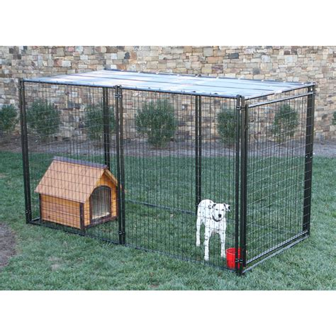 outdoor kennel shop behlen country 10 ft x 5 ft x 6 ft outdoor kennel