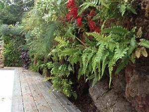 Mur Végétal Extérieur : mur vegetal exterieur les derni res id es ~ Premium-room.com Idées de Décoration
