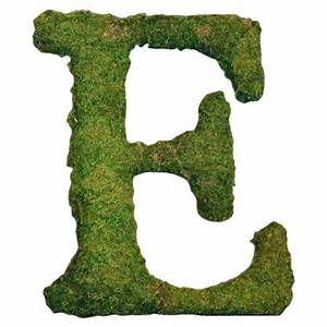 169 best images about e e on pinterest initials With live moss letters