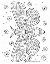 Coloring Moth Dead Skull Intricate Adult Skulls Woojr Sugar Popular Detailed Printable sketch template