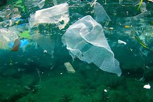 environmental protection essay list llm dissertation topics thesis shrimp