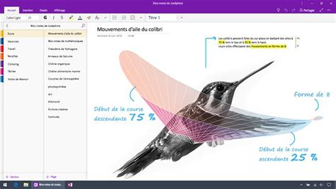 Diff Rence Entre Iphone Et Smartphone by Quelle Est La Diff 233 Rence Entre Onenote Et Onenote 2016