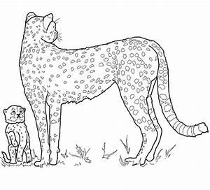 Dessin Jaguar Facile : coloriage b b gu pard et sa m re coloriages imprimer gratuits ~ Maxctalentgroup.com Avis de Voitures