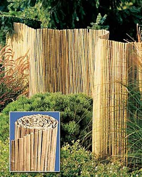 bamboo fence cover up new house ideas