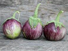 Heirloom Eggplant Seeds