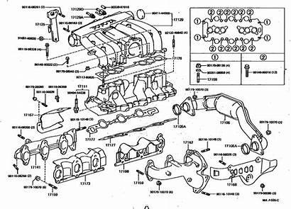Toyota Diagram 4runner Engine V6 1995 Fuel