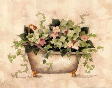 hydrangea bath fine art print  annie lapoint