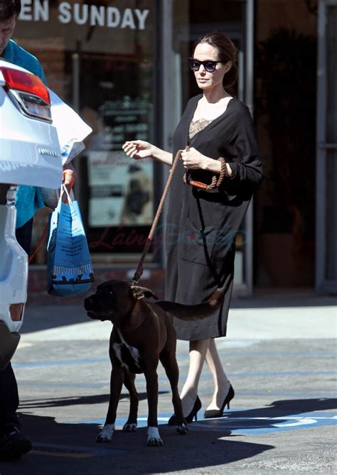 angelina jolie  son knox photographed   pet store