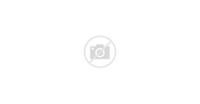 Archive Bookshelf Mid Century Walnut Modern Shelves