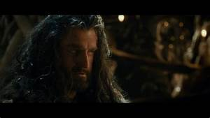 Thorin Oakenshield images Thorin Oakenshield - The Hobbit ...