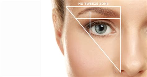 Lt Pro Eye Brow how to groom shape your eyebrows like a pro more