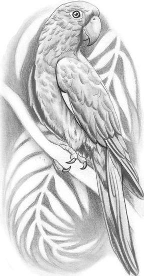 aztec parrot tattoo design cultura surena mexicana