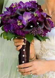 Dark purple, Purple flowers and Purple on Pinterest