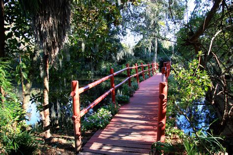 Magnolia Plantation Garden
