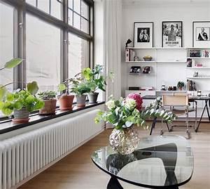 Blumen Für Fensterbank : welche blumen f r die fensterbank wir geben ihnen wertvolle tipps ~ Markanthonyermac.com Haus und Dekorationen