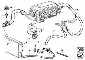 Original Parts For E46 316i 1 9 M43 Sedan    Engine   Cooling System Water Hoses