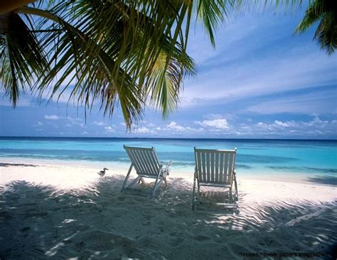 Tropical Beach Scene Wallpaper  Free Best Hd Wallpapers