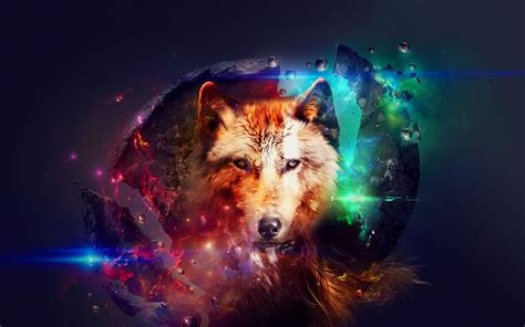 Abstract Wolf Wallpaper Hd by Wolf Hd Wallpaper Background Image 2560x1600 Id