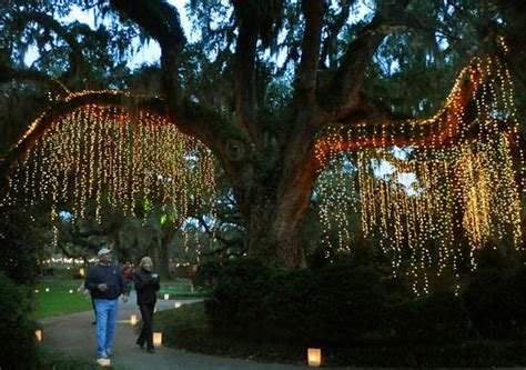 brookgreen gardens of a thousand candles nights of a thousand candles at the brookgreen gardens in Lovely
