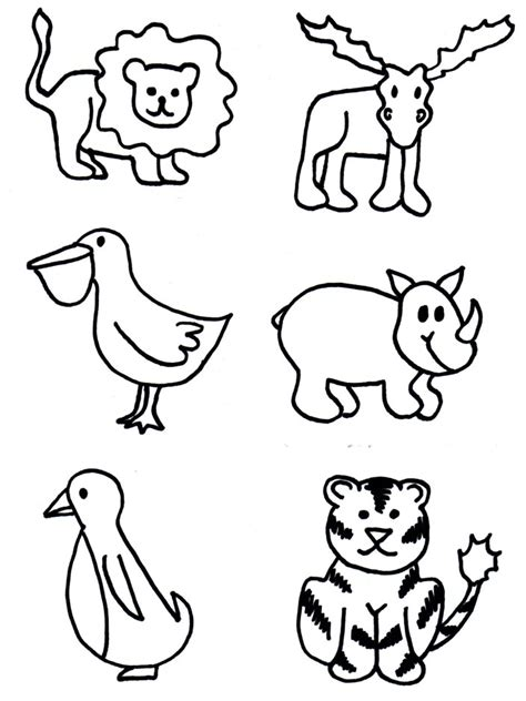 zoo animal pictures  kids az coloring pages
