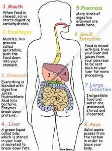 For Good Health  You Need Good Food And Good Food