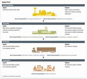 Supply Chain  Supply Chain Diagram
