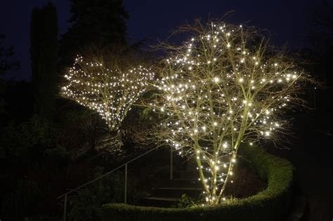 How To Install Christmas Lights On A Tree Basement Finishing University Walls Wet Water Barrier Houses For Sale With Apartments The Birmingham Unfinished Cost House Designs Rent Near Humber College