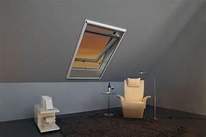 Insektenschutz Dachfenster Schwingfenster : insektenschutz als variante w montage auf die wand insektenschutz roto store ~ Frokenaadalensverden.com Haus und Dekorationen