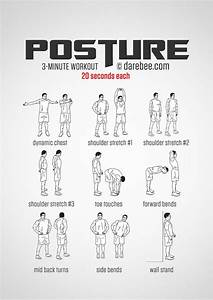 The 25  Best Back Muscles Ideas On Pinterest