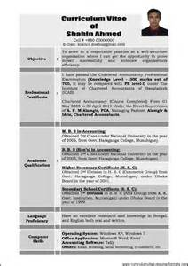 Sample Resume For Experienced Professional Free Samples