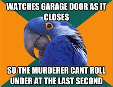 Parrot Meme - funny memes 50 pics