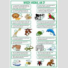 Describing Animals Worksheet  Free Esl Printable Worksheets Made By Teachers
