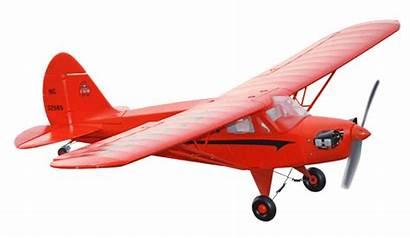 Plane Piper Cub Rc Freewing Cruiser Electric