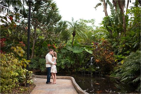 sunken gardens st pete sunken gardens st pete garden ftempo