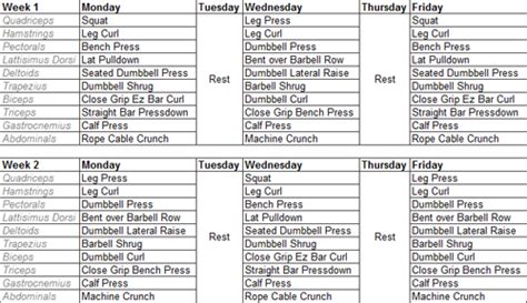 hypertrophy workout template brad weston fitness hypertrophy specific hst