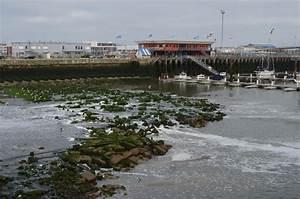 Mandataire Auto Boulogne Sur Mer : que faire en un weekend boulogne sur mer ~ Medecine-chirurgie-esthetiques.com Avis de Voitures