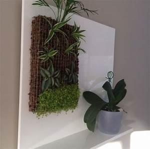Mur Végétal Intérieur Ikea : petit mur v g tal et support fait maison ~ Dailycaller-alerts.com Idées de Décoration