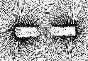 Magnetic Polse