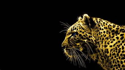 Gold Background Animals Spirit Leopards Wallpapers Desktop