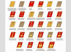 Ranks and insignia of the Nazi Party Wiki Everipedia