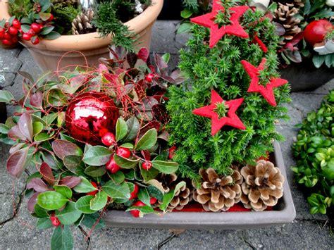 Weihnachtsdeko Im Garten by Weihnachten Im Garten Blumen Ballenberger Das