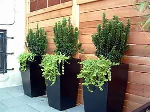 Grand Pot Plante : 4 conseils jardinage pour les plantes en pots decoration ~ Premium-room.com Idées de Décoration